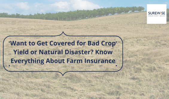 Want to Get Covered for Bad Crop Yield or Natural Disaster? Know Everything About Farm Insurance
