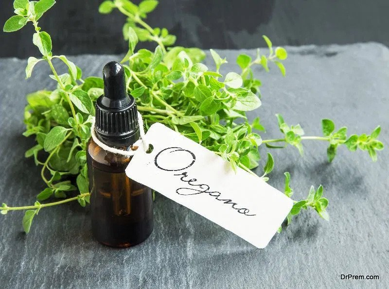 Amazing Benefits Of Oil Of Wild Oregano For Your Skin
