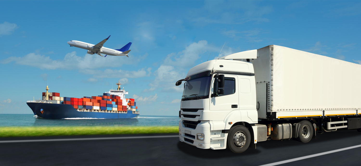 Which product should you select for the Import Export business?